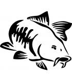 Articole de Pescuit Crap Lansete Mulinete Pescuitul la Crap